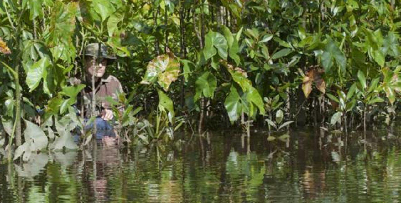 Bannière Festival international du film d'Histoire de Pessac : Une 30e édition dédiée à l'Amérique latine