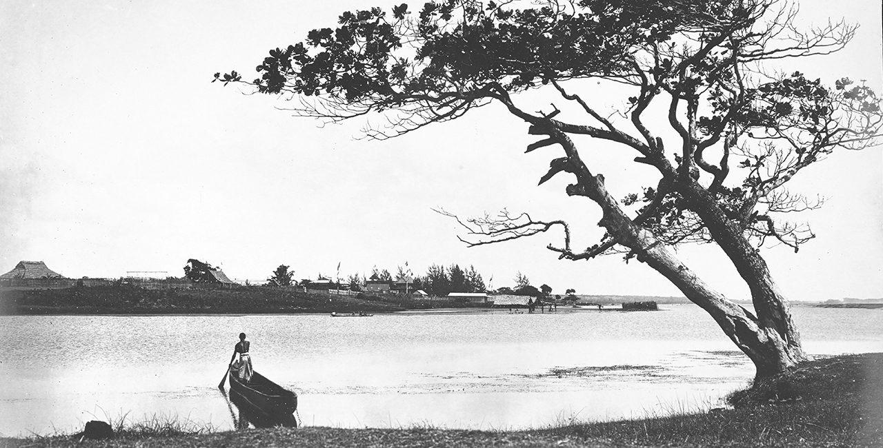 Bannière Portfolio « Souvenirs de la Grande Île : Madagascar. »